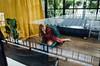 R0365338-2 (RAB THANASORN) Tags: streetphotography streetphotographer street streetphoto streetnowhere streetlife ricoh gr gr2 rabthanasorn rab thailand bangkok thanasorn girl mirror baggage room