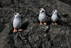 Custom casted 1/12 scale Porgs I painted up cast by starwars geek (chevy2who) Tags: customstarwars customblackseries porgs wars star