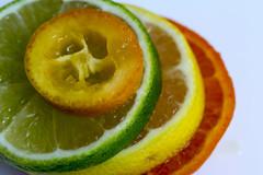 Citrus (Crisp-13) Tags: lemon lime mandarin orange fruit citrus slice kumquat