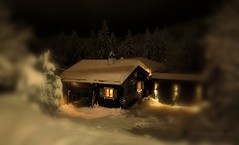 Peeking into my SnowGlobe (evakongshavn) Tags: sundaylights snowglobe winter winterwonderland winterwald winterlandscape snow house oldhouse building oldbuilding new light white black golden trees tree arbre wald forest foret natur nature tiltshift miniature lights nightshot nightscape night