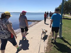 walk-manly-2017-18