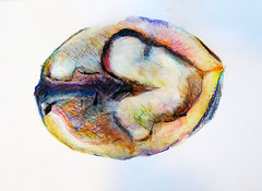#GrandPublic/Atelier adultes/ Laboratoire/ Sylvie Caty (esamCaenCherbourg) Tags: grandpubliccaen esamcaencherbourg sylviecaty 20172018 esamscdessinartplastique