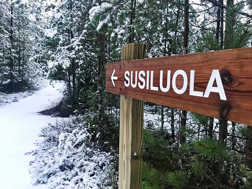 Karijoen Susiluola