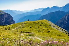 Berggipfel (Markus Lenz) Tags: berge bergwiese bildgestaltung diewelt europa fotografie gebirge italien naturlandschaft orte südtirol tiefe wiese