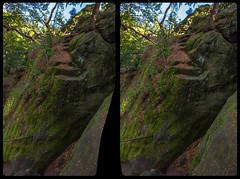 Stairway to nowhere 3-D / CrossEye / Stereoscopy / HDR / Raw (Stereotron) Tags: sachsenanhalt saxonyanhalt ostfalen harz mountains gebirge ostfalia hardt hart hercynia harzgau teufelsmauer geology mystery hidden unknown spukhaft stairs nowhere blankenburg crosseye crosseyed crossview xview cross eye pair freeview sidebyside sbs kreuzblick 3d 3dphoto 3dstereo 3rddimension spatial stereo stereo3d stereophoto stereophotography stereoscopic stereoscopy stereotron threedimensional stereoview stereophotomaker stereophotograph 3dpicture 3dglasses 3dimage canon eos 550d chacha singlelens kitlens 1855mm tonemapping hdr hdri raw
