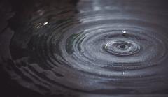 goutte (Johnny.fr) Tags: goutte eau gif noir et noiretblanc canon 650d eos 55 250 55mm250mm is water black white texture macro