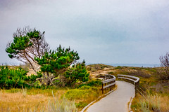 Cloudy Day at the Ocean Digital Watercolor (randyherring) Tags: asilomarconferencegrounds ca california pacificgrove pacificocean beach boardwalk historic nature outdoor park recreational