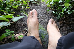 IMG_1230 (bfe2012) Tags: barefoot barefeet barefooting barefooted barefooter barefoothiking barefootlifestyle feet dirtyfeet toughsoles