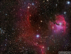 Seagull Nebula (neilcreek) Tags: nebula cosmos universe astronomy astrophotography milkyway stars space nightscaper nightsky nightscape milkywaychasers starrynight astrophoto universetoday longexposure nightphotography nightimages nightshooters stargazing longexposureshots seagull