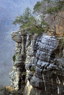 Buffalo_Mountains