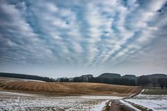 20022018-DSC_0024 (vidjanma) Tags: ciel campagne sillons réflexion nuages