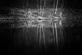 Black & White Reflections