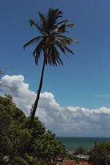 Verão (ARTE - MARK) Tags: vsco love drama sky beach ocean blue clouds brazil art tumblr instagram inspiration indie photography white