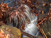 Ringwood State Park_16650 (smack53) Tags: smack53 ringwoodstatepark ringwood newjersey stream creek river brook water waterfall rocks scenic scenery landscape outdoors outside winter wintertime winterseason canon powershot g12 canonpowershotg12 njbotanicalgardens njstatepark longexposure