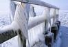 The walkway at Afsluitdijk is covered with ice (B℮n) Tags: vlietermonument afsluitdijk breezanddijk winter ijs ice frozen sea ijsselmeer waddenzee aanmeerplaats beijsd bevroren brugdijk hekhekwerk kou koud koude loopvlonder meer meerpaal meerpalen monument ochtend ochtendkou paal palen stilvlonder vriest vriezen zonsopgang cold morning holland netherlands pier noord layer icing icicles 2march2018 2 maart 2018 artic icesculptures sculptures nature 50faves topf50