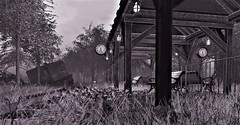 Last train out of aspen springs 1979 (ᗷOOᑎᕮ ᗷᒪᗩᑎᑕO) Tags: sl secondlife aspen springs train platform clock flowers sky grasses shadows beauty nature natural wild overgrown