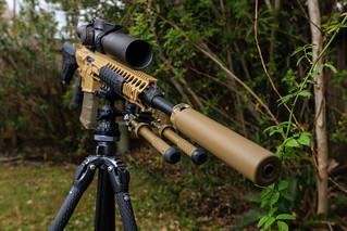 Canon EOS-1D X-EF16-35mm f-2.8L II USM-January 15, 2018-33.jpg