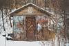 Spotted Along the Path (A Great Capture) Tags: snow winter toronto park alongthetrail hut shed shack agreatcapture agc wwwagreatcapturecom adjm ash2276 ashleylduffus ald mobilejay jamesmitchell on ontario canada canadian photographer northamerica torontoexplore l'hiver 2017