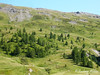 Montagne (Audrey Abbès Photography ॐ) Tags: alpesdusud alps montagne ciel bleu nature arbre vert verdure nuage france audreyabbès paysage colline hautesalpes alpes landscape cabane