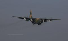 """Lockheed, C-130H, 1303 / 85-0015, """"Republic of China Air Force"""", RCSS, Taipei, Taiwan (Daryl Chapman Photography) Tags: 1303 landing arrival plane aviation canon 5d mkiii 70200l runway10 850015 5060 c130h c130 transport rocaf republicofchinaairforce lockheed songshan"""