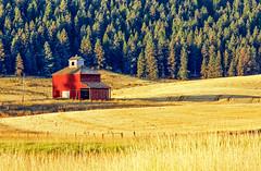 _MG_11960_edited & cropped (christal_steele) Tags: kamiakbutte palouse barn red washington landscape scenic