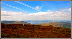 """ West to Blessington "" ("" P@tH Im@ges "") Tags: lakes mountain westwicklow heather mullaghcleevaunmtn853m blessington"