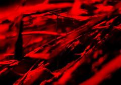 Netz (schubertj73) Tags: netz network x10 fujifilm gimp fotografie foto fotos fotograf photo photography photos photographer photoart kunst kunstwerk kunstfotografie kunstfotograf künstler art artwork artworks artphoto artphotography artphotographer artist makro makrofotografie macro macrophotography abstract abstrakt abstractart abstrait monochrome monochromo schubertj73 jörg schubert