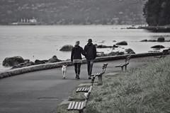Morning stroll (Zara Calista) Tags: beach couple pair march spring early nikon nikkor canada bc english bay