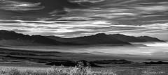 - Death Valley Morning - (claudiov958) Tags: biancoenero blackwhite blancoynegro california černýabílý claudiovaldés czarnyibiały deathvalley desert landscape mediumformat mediumformatdigital ngc noiretblanc pentax645z pentaxart pretoebranco rocks schwarzundweiss черноеибелое mountains dawn smcpentaxfa645150300mmf56edif