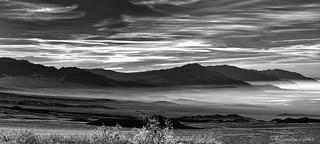 - Death Valley Morning -