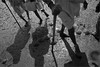 arrival, mithitalai (nevil zaveri (thank U for 15M views:)) Tags: zaveri people india narmada photography photographer images photos blog holy stockimages river photograph photographs nevil nevilzaveri stock photo parikramavasi monochrome blackandwhite bw gujarat gujrat old men man pilgrims mithitalai dahej parikrama devotee cairn pile mud shore seacoast bank shadows walking stick delta