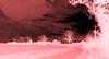 Digital vision !!! (François Tomasi) Tags: digital numérique filtre yahoo google flickr françoistomasi tomasiphotography traitementnumérique campagne nature reflex nikon photo photographie photography photoshop france lights light lumière arbres arbre trees tree clouds cloud nuages nuage ciel sky iso french février 2018