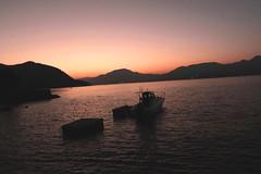 IMG_2411 (jumppoint5) Tags: evening dusk miyajima japan boats sea sunset hiroshima