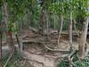 P1020665.jpg (vickydoc) Tags: lingas rivièrekbalspean cascade siemreap rivièreauxmillelingas cambodia angkor cambodge vishnou banteaysrei siemreapprovince kh
