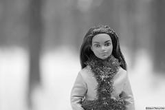 Фото: Дарья Меркулова. Photo by Daria Merkulova. Made to Move - The Ultimate Posable - Sport DVF68 - 2016 Skateboarder Barbie doll, Mattel. Кукла Барби Скейтбордистка DVF70 - Безграничные движения - Спорт (russian-photographer.ru) Tags: doll barbiedoll barbie winter russia snow nature beauty bright кукла барби зима россия снег природа красота mattel barbieskateboarder black white blackandwhite куклабарби игрушка toy