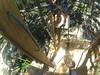 G0121296 (harleyhurricane1) Tags: line zip zipline ziplinepark dadecityflorida treehoppers centralflorida largestziplineparkincentralfl dadecity
