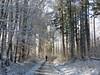 Kurzer Besuch des Winters (thobern1) Tags: keltern weinberg wingert garten garden enzkreis badenwürttemberg germany winter schnee