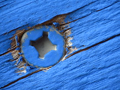 Lonesome blue (woody329) Tags: macromondays fasteners canon sx50hr canon500d blue screw plywood sx50 wood circle macro metal