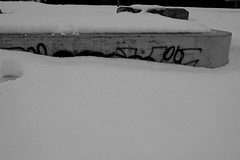XP020102 (My1K) Tags: blackandwhite blackwhite bw snow