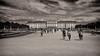 _MG_3443-Modifica.jpg (Luca Sangiovanni) Tags: parco canoneos7d giardino schönbrunnpark seppia easterneurope canon estate garden summer 2017 canonef24105f4isl sepia bw blackandwhite biancoenero park castellodischönbrunn vienna 7d wien austria at