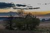 Coucher de soleil sur les Hautes Fagnes-2 (jipebiker) Tags: coucherdesoleil sunset hautesfagnes belgique belgium nuage cloud fagne fens ciel sky landscape tree heurebleue bluehour