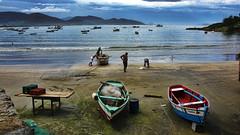 Pescadores de Garopaba (Miradortigre) Tags: brasil brazil fisherman pescadores playa praia beach 巴西 ブラジル бразилия