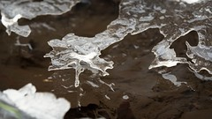 on a creek - creations of ice (rscholle) Tags: water winter ice creek naturesart