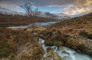 A Glen Cannich View ..