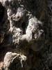 IMG_9942 (Dairo Cervantes (D.C.)) Tags: arbol feo personajes raro rudo