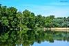DSC_0078n wb (bwagnerfoto) Tags: lobau donauauen nationalpark wien vienna nature austria reflection mirror green blue landscape landschaft water lake tájkép