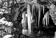 Comment rester de glace ? (BelSoq) Tags: glace hiver winter froid stalactites noiretblanc monochrome ice blackwhite