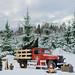 Quintessentially Canadian (P. A. McKercher) Tags: brunlanes larvik snow trees