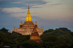 Pre-dawn view of gold gilded stupa of Ananda Temple - Old Bagan, Myanmar (Phil Marion) Tags: myanmar burmese asian oriental buddhist philmarion candid woman girl boy teen 裸 schlampe 나체상 벌거 desnudo chubby nackt nu ヌード nudo khỏa 性感的 malibog セクシー 婚禮 hijab nijab telanjang nude slim plump tranny sex slut nipples ass boobs tits upskirt naked sexy bondage fuck tattoo fetish erotic cameltoe feet cock desi japanese african khoathân latina khỏathân beach public swinger cosplay gay wife dick milf crossdress ladyboy babe