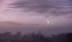 Winter Fog Moore Warrington (joanjbberry) Tags: rework hd filters moore moorewarrington warrington fog